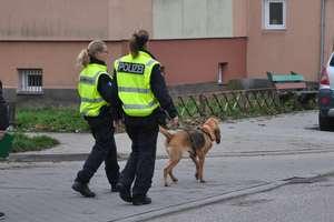 Olivia i Chira pomagają policji w znalezieniu mordercy