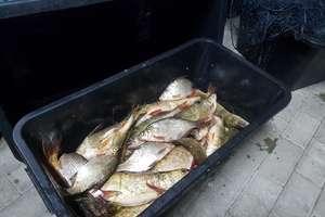 Kłusował na jeziorze Święcajty. W łodzi miał 21 kg ryb