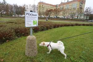 Pi(e)suary, czyli psie WC w służbie olsztyńskiej zieleni i... higieny