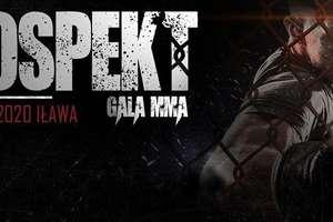 W Iławie odbędzie się gala MMA! Znamy pierwsze szczegóły