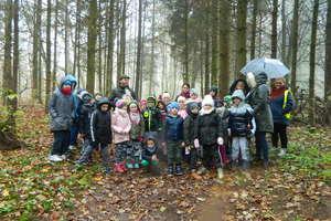 Galiny. Uczniowie przekonali się, że listopadowy las wcale nie jest nudny.
