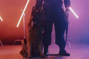 Dumny z bycia psem. Służba to jego pasja, a muzyka jej dopełnieniem [VIDEO]