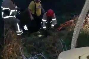 Sarna wpadła do studzienki. Nietypowa akcja ratunkowa strażaków-ochotników