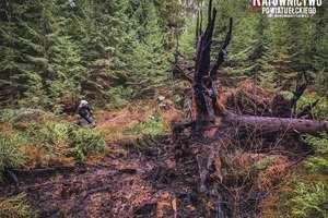 Nietypowa interwencja strażaków - gasili płonące torfowisko