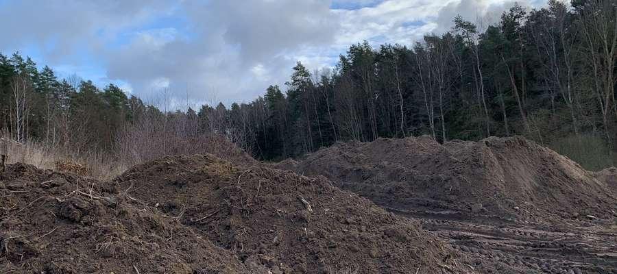 niszczenie obrzeży jeziora Podkówka w Olsztynie