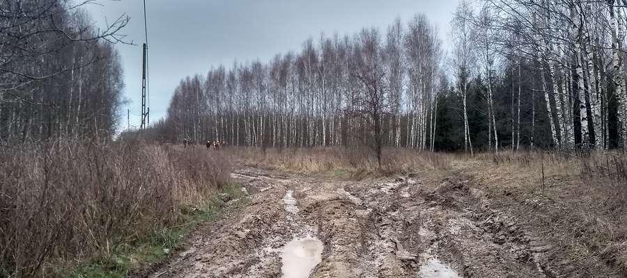 Rejon polowania pod wsią Orzechowo w gminie Dobre Miasto