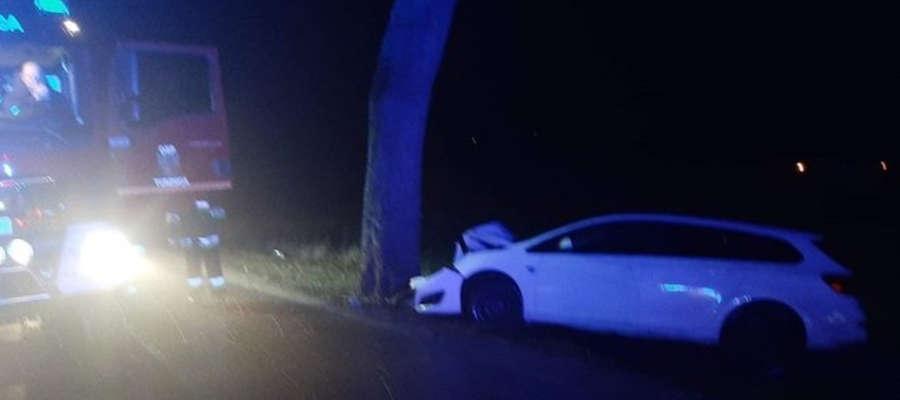 W poniedziałkowy wieczór osobowe auto uderzyło w drzewo w Wirwajadach