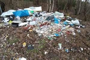 Coraz więcej śmieci w lasach. Zwiększa się też wykrywalność leśnych