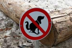 Czyj to problem: psi czy ludzki?