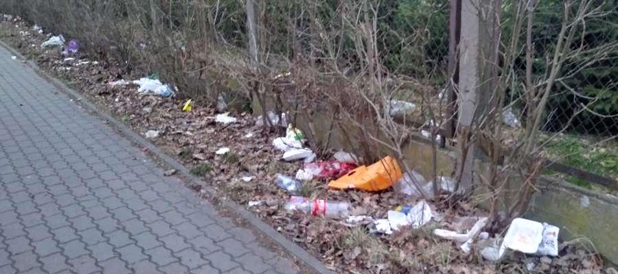 Śniegu zimą nie było, ale śmieci na ulicach Ostródy nie brakuje
