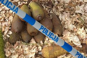 10 granatów moździerzowych w iławskim lesie