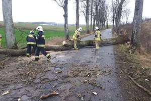 Wichura zerwała dachy w Sępopolu i Wojciechach. Kilkadziesiąt interwencji strażaków. [ZDJĘCIA]