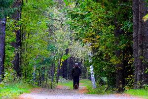 Do lasu idziemy z głową i rozsądkiem — rozmowa z nadleśniczym Nadleśnictwa Bartoszyce