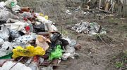 Olsztyński radny sprząta brzeg Łyny. Gdzie jest miasto?