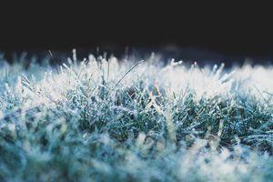 IMGW ostrzega: będzie mroźno i mgliście, może spaść też śnieg. Sprawdzamy pogodę na święta