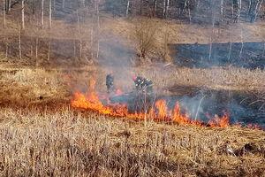 Apelujemy: Stop Pożarom Traw!