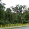 Uwaga — zakaz wejścia do lasu nie skończył się (zgodnie z zapowiedzią) tylko trwa