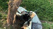 23-latka z powiatu mławskiego zginęła w wypadku pod Ciechanowem