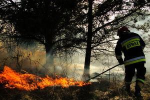 Życzenia starosty Andrzeja Ochlaka dla naszych strażaków