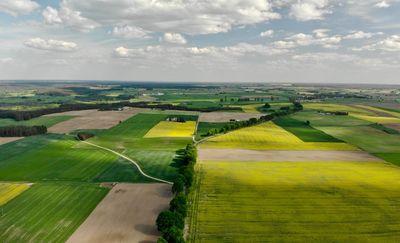 Aspekty dochodowe rolników