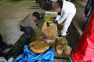 Kokaina za 3 miliardy. Wielki sukces olsztyńskich policjantów