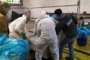 Przejęli kokainę o wartości ponad 3 miliardów złotych!