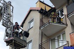 W czasie upału zamknęli psy na balkonie i w samochodzie