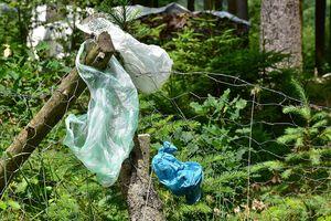 Wywiózł śmieci do lasu, zapamiętał go świadek