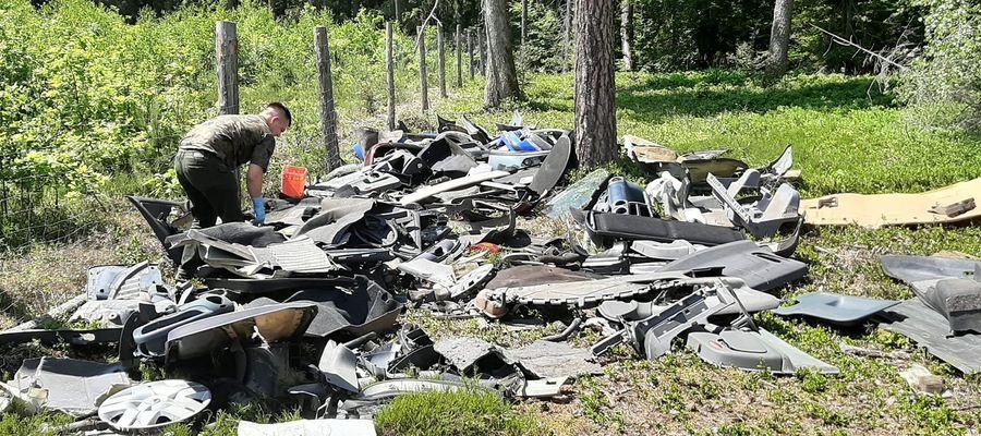 Bezmyślny sprawca wyrzucił śmieci do lasu