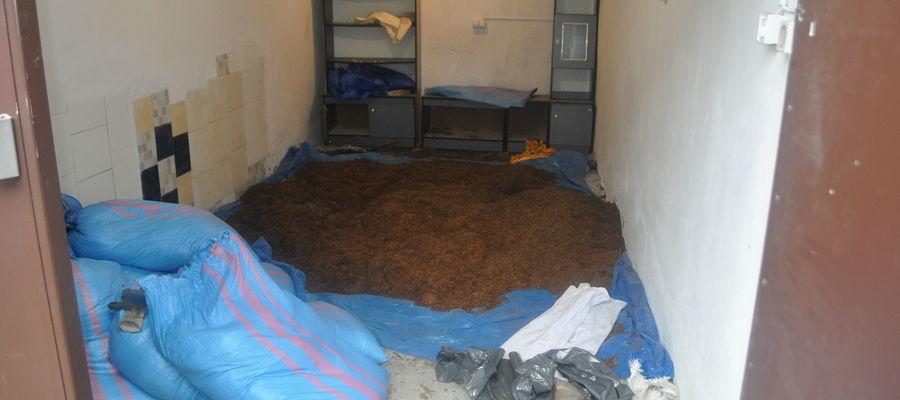 Policjanci ujawnili 300 kilogramów krajanki tytoniowej