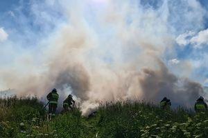 Pracowite przedpołudnie oleckich strażaków