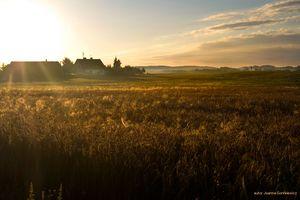 Siedlisko Cztery Żywioły – Twój mazurski raj