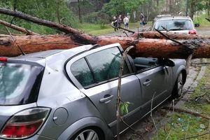 Gwałtowne burze nad Olsztynem. Strażacy interweniowali 36 razy [ZDJĘCIA]