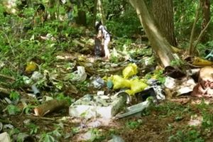 Dwie przyczepy śmieci, ponad dwie tony eternitu - to tylko część tego, co ostatnio znaleziono w lesie. Ministerstwo mówi
