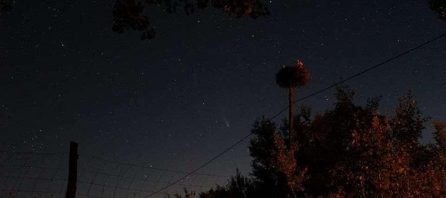 Nocne niebo w Lipicy z kometą Neowise.