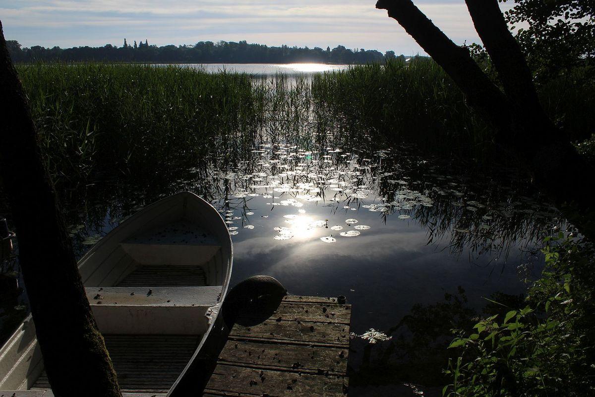 Jeziora Dąbrowa Wielka, okolice Dąbrówna.