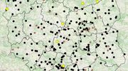 Policja uruchomiła mapę wypadków drogowych
