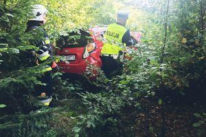 Ścięła słupek, znak drogowy i zatrzymała się w lesie. Dwie kobiety trafiły do szpitala