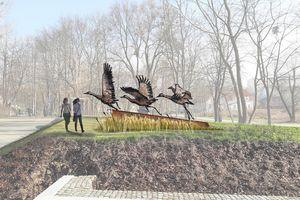 Żurawie w parku