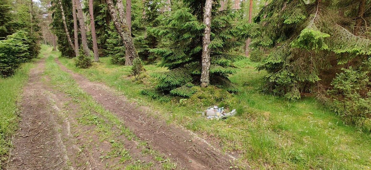 Cezary: Środek podolsztyńskiego lasu. Takich miejsc jest wszędzie pełno. Jakim tumanem trzeba być, żeby bezczelnie wjechać jeszcze autem kilka km w głąb lasu, by wywalić taką stertę śmieci? Wstyd!