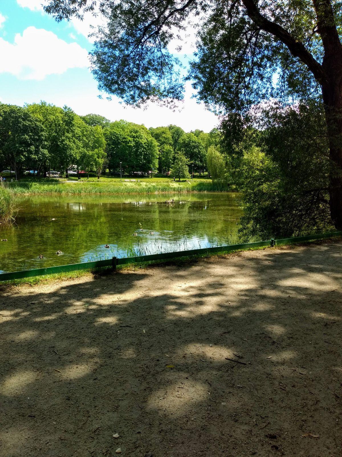 Olsztyn, park Jakubowo