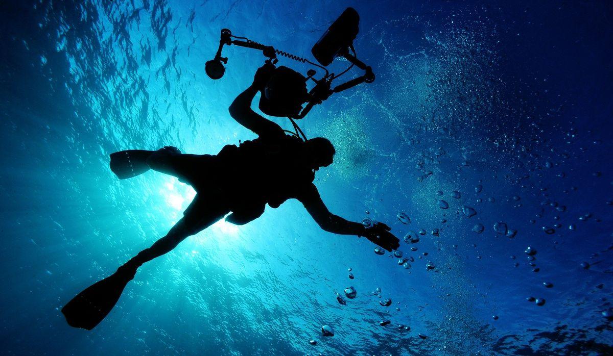 Oceanicze Ogrody: 60 lat Podwodnej podróży Alicji i Janusza Darmińskich - full image