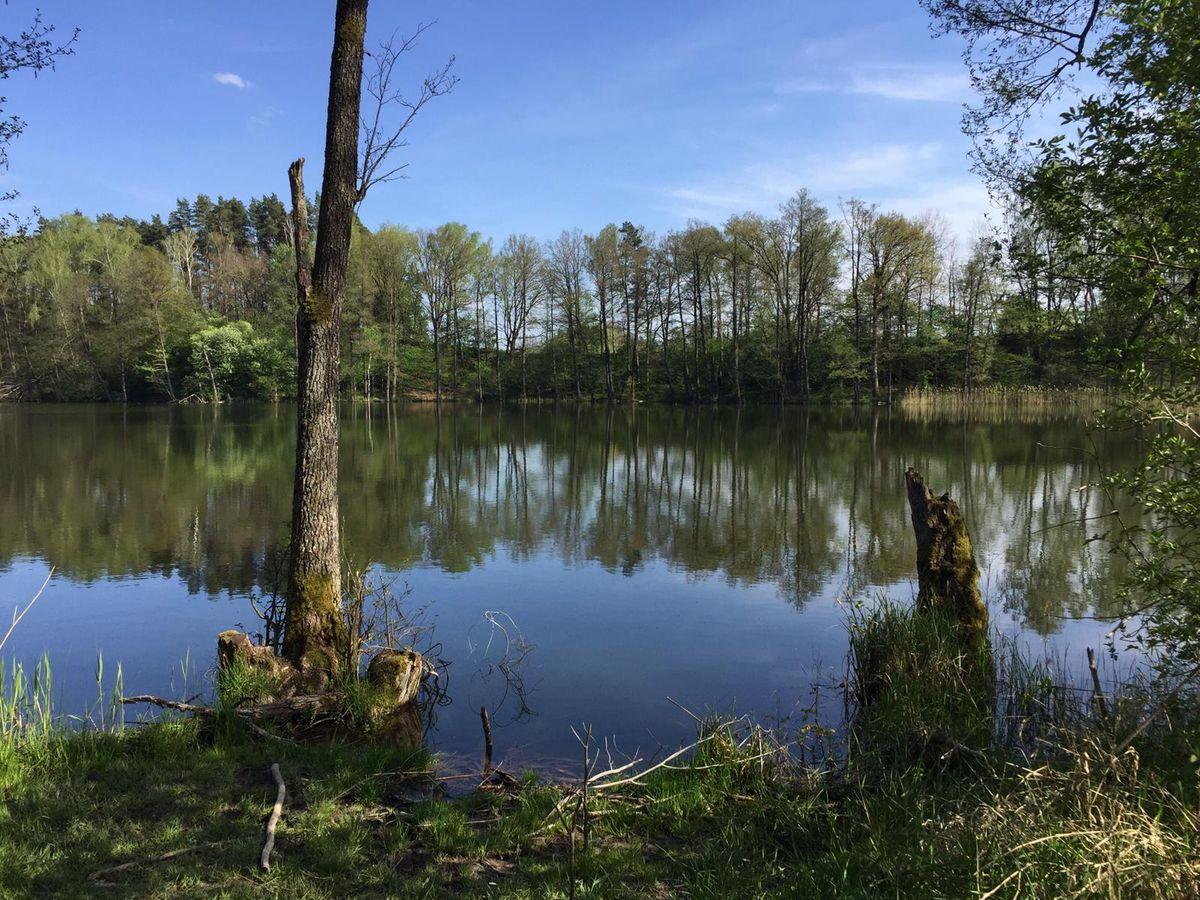 Wólka Orłowska: jezioro Odnoga