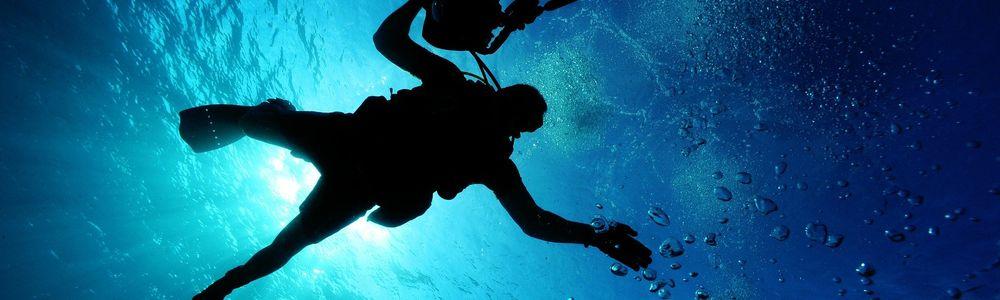 Oceanicze Ogrody: 60 lat Podwodnej podróży Alicji i Janusza Darmińskich