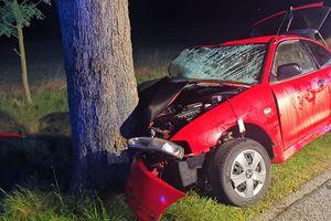 Trzech jechało, żaden nie kierował. Pijany kierowca uderzył w drzewo i wjechał do przydrożnego rowu
