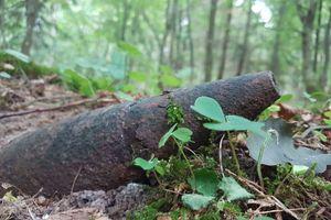 Niebezpieczna pamiątka po wojnie znaleziona w lesie