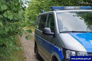 Jedni szukają w lesie grzybów, inni... grzybiarzy. Policjanci musieli ratować z opałów m.in. 88-latka oraz matkę z dzieckiem