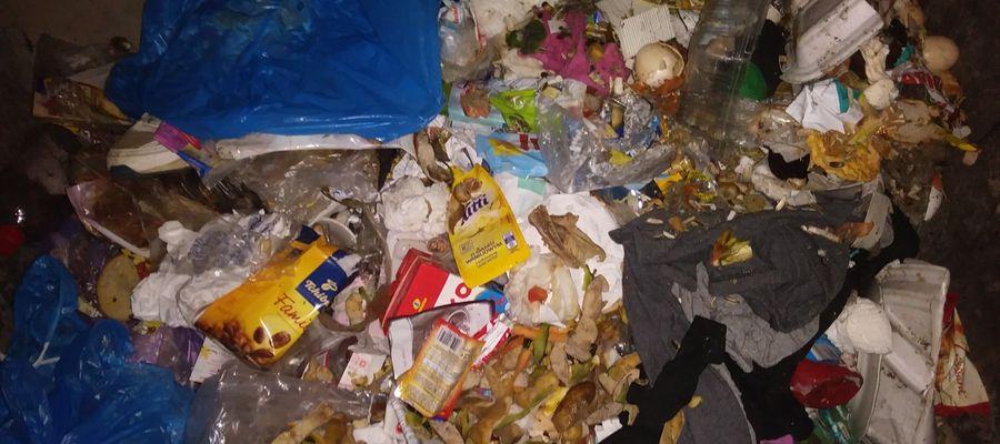 """Taką """"segregację"""" odpadów zastawali czasem urzędnicy z Górowa Iławeckiego."""