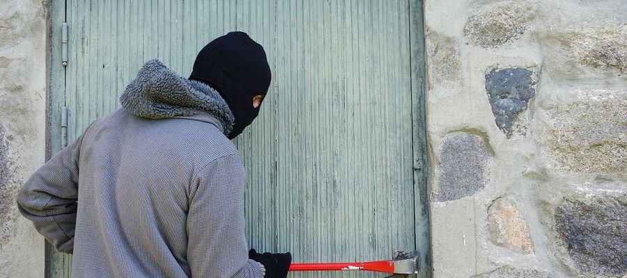 Policjanci zatrzymali poszukiwanego za kradzież w włamaniem