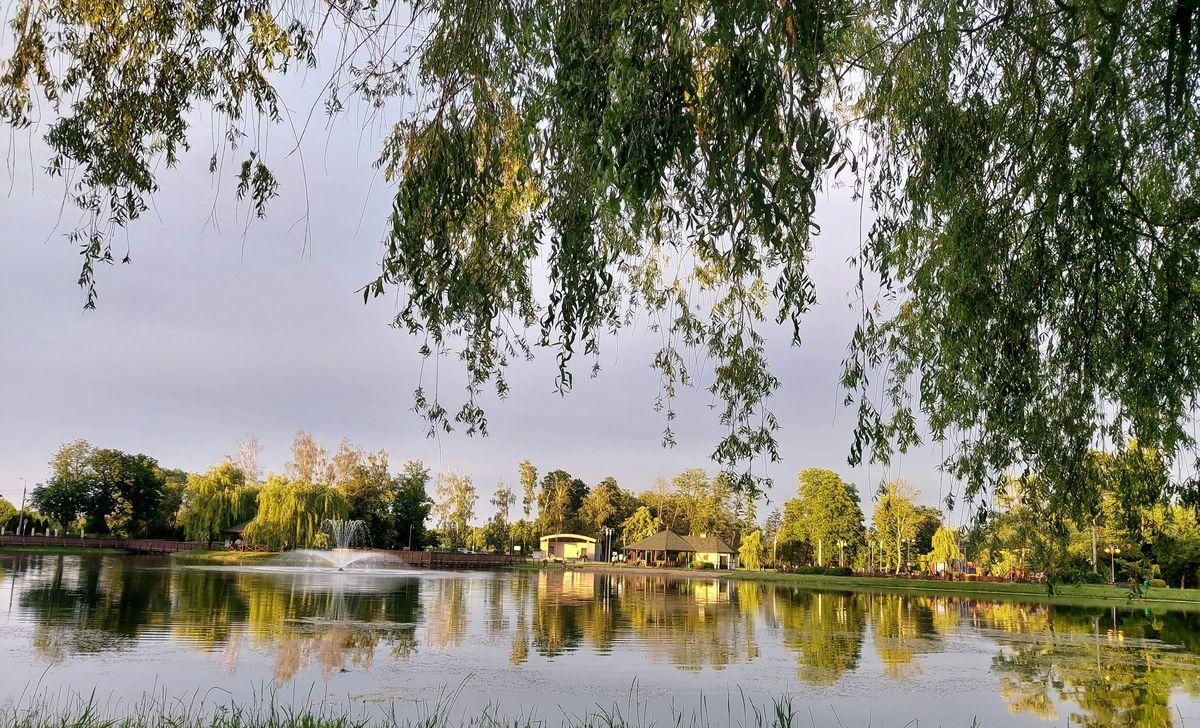 Jeziorko miejskie w Nidzicy